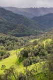 Meadow on the valleys of Rancho Canada del Oro Open Space Preserve, California stock image