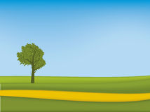 Meadow (vector). Meadow with tree (vector). Illustration of a rural scene stock illustration