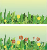 Meadow. Vector image. Background. Stock Photo