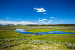 Meadow with water in yellowstone park. Meadow with water under blue sky and cloud in yellowstone park stock photography