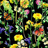 Meadow watercolor flowers and butterfly seamless pattern Stock Photos
