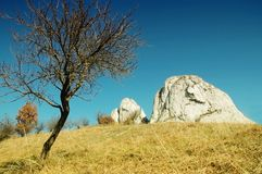 Meadow with white cliffs Stock Photo