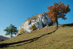 Meadow with white cliffs Stock Image