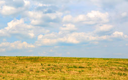Meadow with white clouds on blue sky Royalty Free Stock Image
