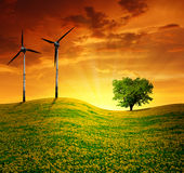 Meadow with wind turbines Stock Photo
