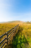 Meadow with a wooden fence Stock Photo