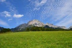 meadow wysokogórska Fotografia Stock