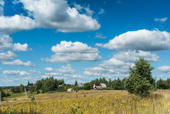Meadow with yellow wildflowers near village Royalty Free Stock Photos