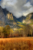 Meadow Yosemite Valley Royalty Free Stock Photography