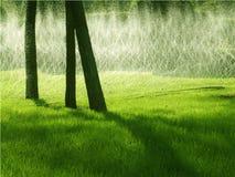 Meadowand springbrunnar Arkivfoto