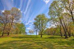 Meadowlark庭院 图库摄影