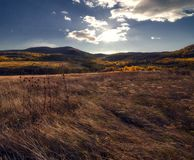 Meadows of autumn. Colors , sun royalty free stock photography