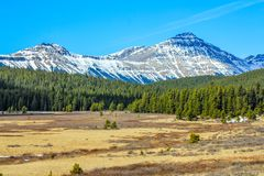 Meadows below the Alberta Foothills. Clearwater County in central Alberta Stock Photos