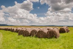 Meadows in Bieszczady. Mountains, Poland Stock Images
