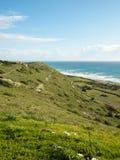 Mediterranean coast. Meadows on the coastline of Mediterranean sea Stock Images