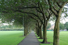 The meadows, edinburgh. One of the foothpats in the meadows park, edinburgh stock photo