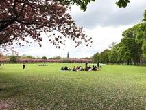 Meadows Edinburgh students Royalty Free Stock Photo