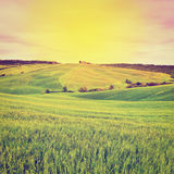 Meadows. Farmhouse and Green Sloping Meadows of Tuscany at Sunset, Instagram Effect Royalty Free Stock Images