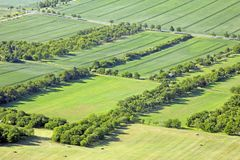 Meadows and fields. Aerial view on meadows and fields with rows of trees and a street royalty free stock images