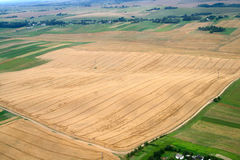 Meadows and fields. Aerial image. Stock Photography