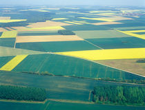 Meadows and fields. Aerial image. Stock Photo