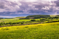 Meadows and fields West Pennine Moors stock photos