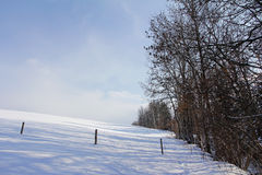 Meadows and fields in winter Royalty Free Stock Images