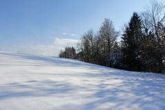 Meadows and fields in winter Royalty Free Stock Photos