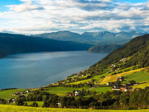 Meadows on the fjords. Meadows and village on norvegian fjords royalty free stock photography