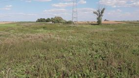 Meadows, grasses and trees in a rural area. View at the countryside. Panorama of the village, fields, meadows and trees. Lush grass and thickets stock video footage