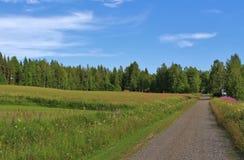 Meadows at gravel road Stock Photos