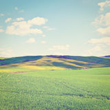Meadows. Green Sloping Meadows of Tuscany, Instagram Effect Royalty Free Stock Image