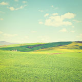 Meadows. Green Sloping Meadows of Tuscany, Instagram Effect Royalty Free Stock Images
