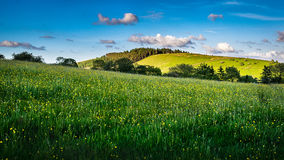 Meadows and hill on springtime royalty free stock image