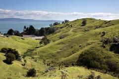 Meadows and hills on the Coromandel Peninsula Stock Photos