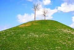 meadows kopii przestrzeni zdjęcie royalty free