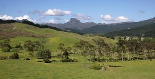 Meadows and mountains on the Coromandel Peninsula Royalty Free Stock Images