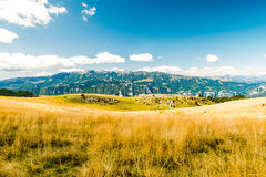 Meadows in the mountains create sinuous lines. Royalty Free Stock Image