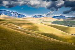 Meadows in the mountains create sinuous lines. Stock Images