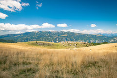 Meadows in the mountains create sinuous lines. Royalty Free Stock Photo