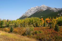 Meadows, mountains and forests. Colorful autumn view of rocky mountains and forests in kananaskis country, alberta, canada Stock Photos