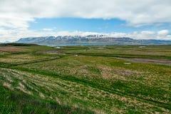 Meadows and mountains in Laufas near Akureyri, Iceland Royalty Free Stock Image