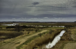Meadows near Skjern, Denmark Royalty Free Stock Photography