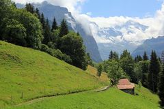 Meadows with path and view on mountains in Switzerland. Meadows with walking path and beautiful view on the mountains in Switzerland. Mountain landscape royalty free stock photography