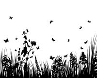 Meadows plant  silhouette Royalty Free Stock Photo
