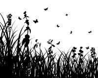 Meadows plant silhouette Stock Photo