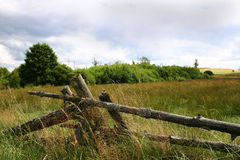meadows pokojowe obraz royalty free