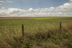 Meadows - Salisbury plain/the fence. Stock Images