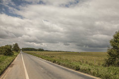 Meadows - Salisbury plain/the road. This image shows some green meadows in Salisbury, England, the UK Stock Photos