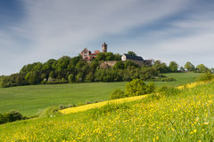 Meadows in spring in front of castle Ronneburg Royalty Free Stock Photo